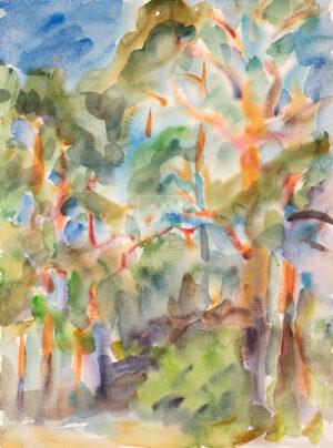 Картина. Пейзаж. № 15. Сквозь кроны сосен