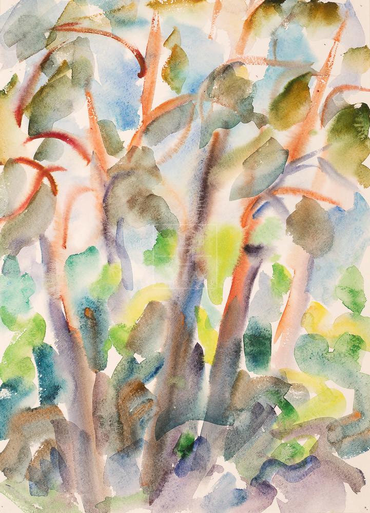Картина. Пейзаж. № 16. Сквозь кроны сосен