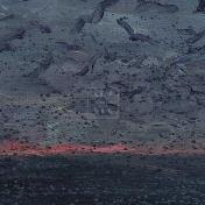 Фрагмент картины 2/3. Пейзаж. Позвони